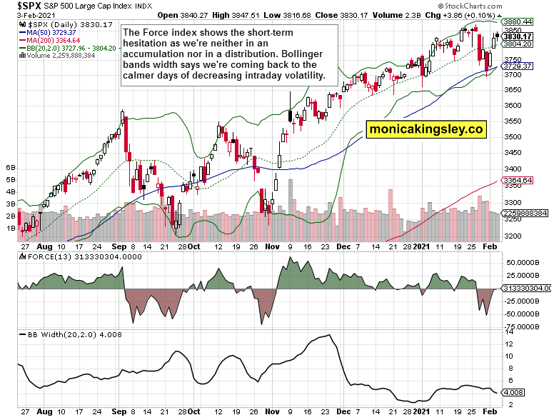S&P 500 force index